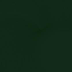 6005_verde_opaco