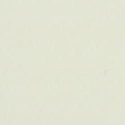 ral1013-biancoavorio
